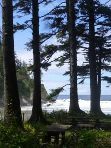 Short Sand Beach, Oregon, surf, forest, ocean