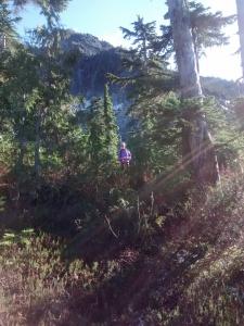 west vancouver lions hike ridge
