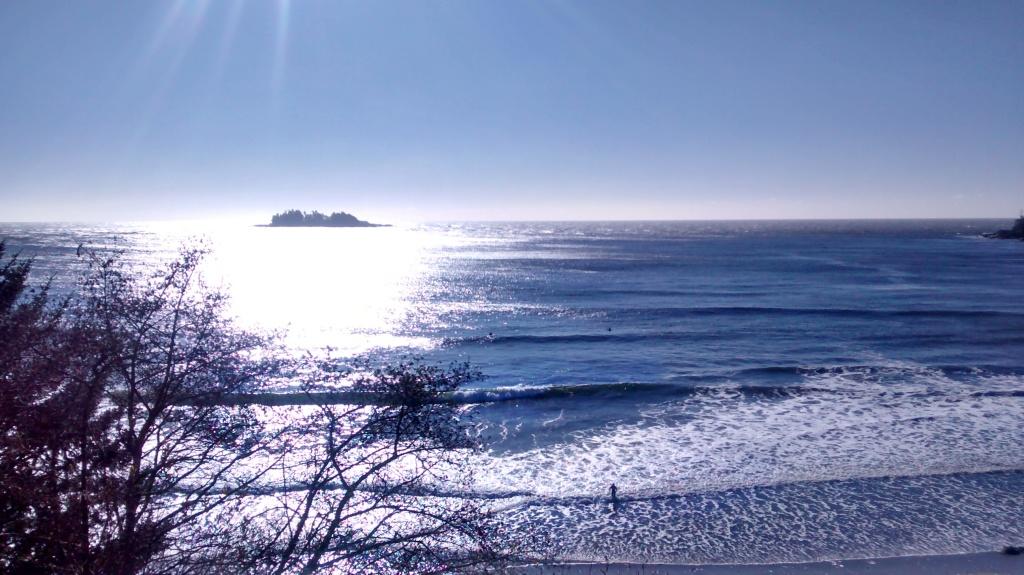 florencia bay tofino beach surf sun