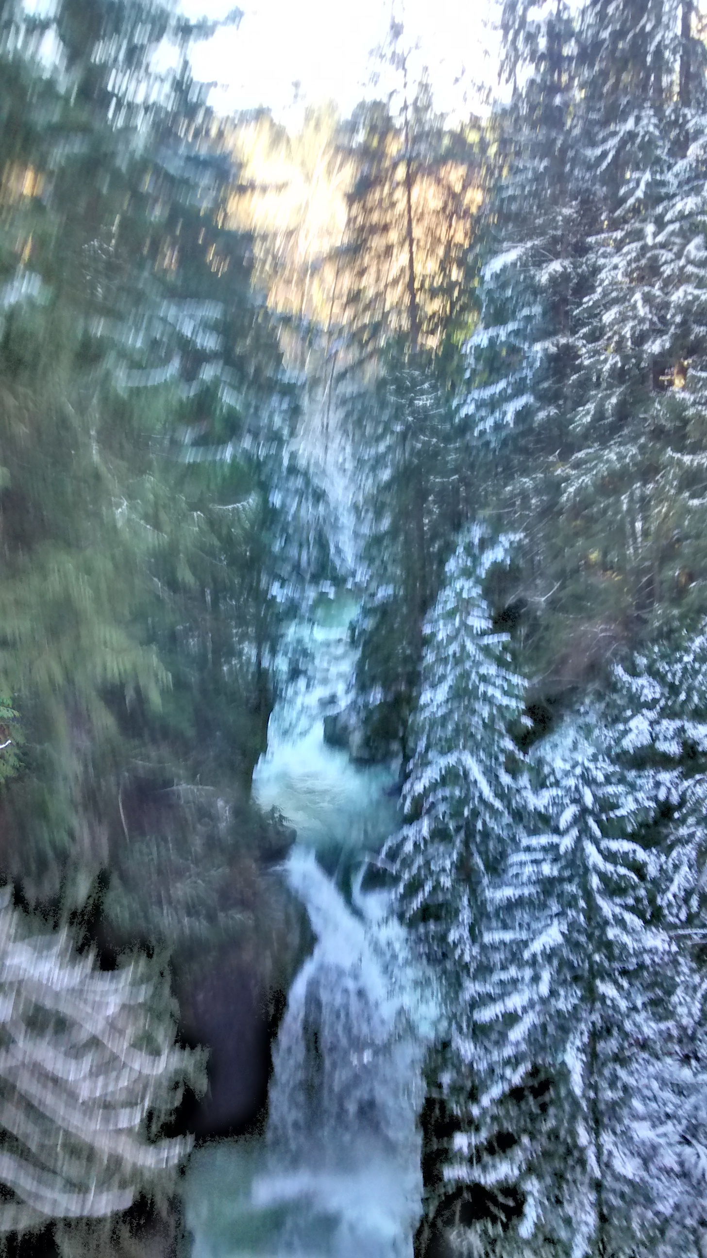 Lynn Canyon North Vancouver snow blurry
