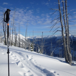 ski pole, mount cayoosh, backcountry, alpine touriing