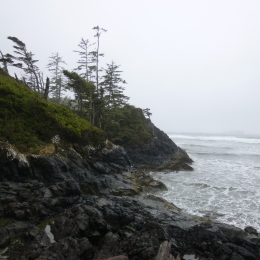 Tofino, beach, Cox, ocean, wind, surf