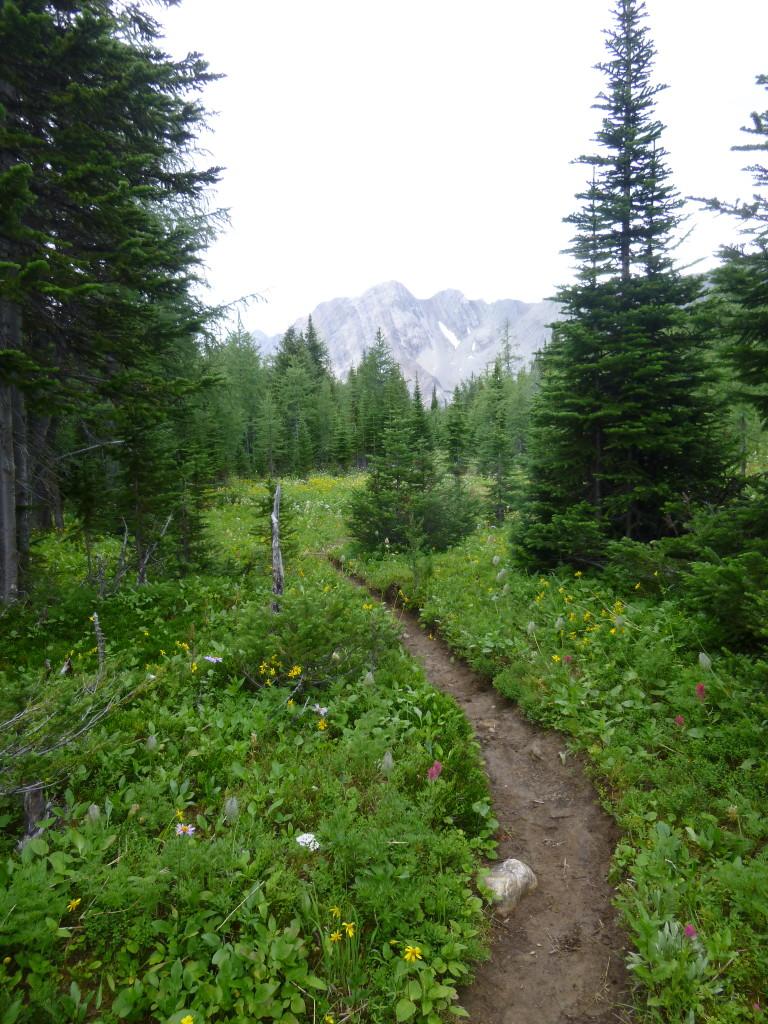 banff, hike, mystic trail
