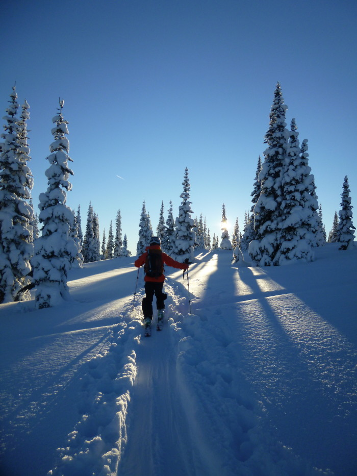 manning park, skiing, ski touring, backcountry, sunset