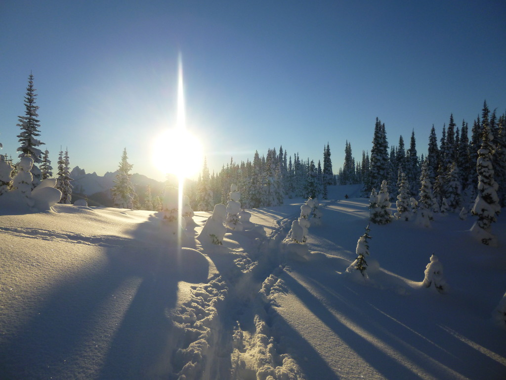 manning park, british columbia, BC, skiing, ski touring, backcountry