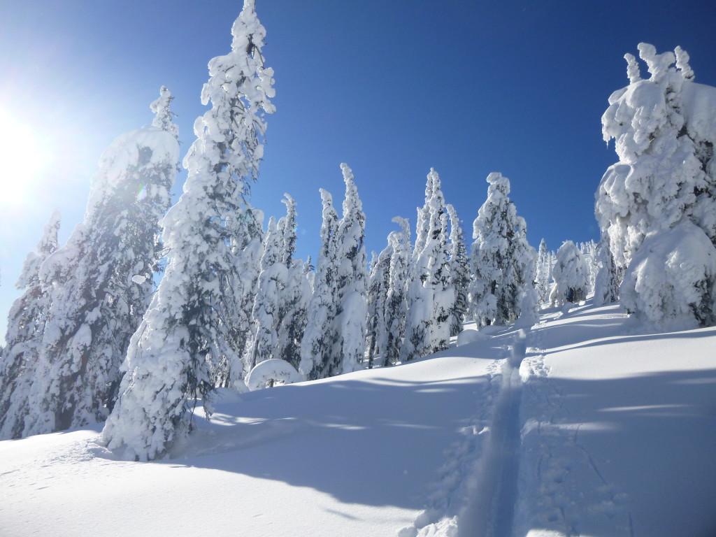mount baldy, british columbia, bc, oliver, skiing, ski resort, backcountry, ski touring, skin track