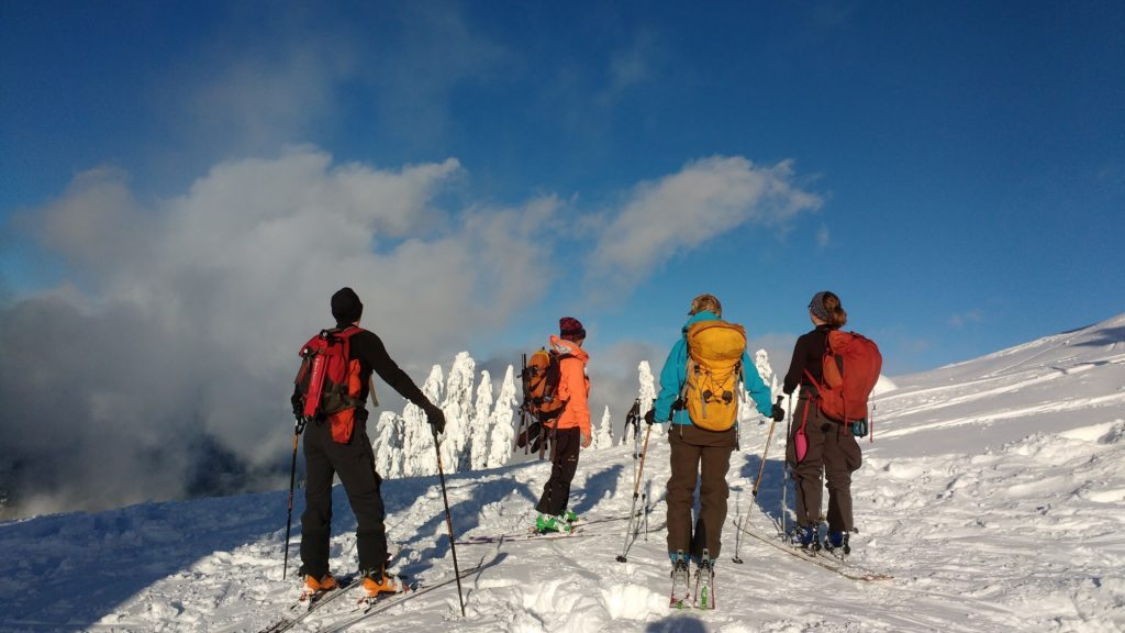 backcountry skiing, snow, mountain, skiers