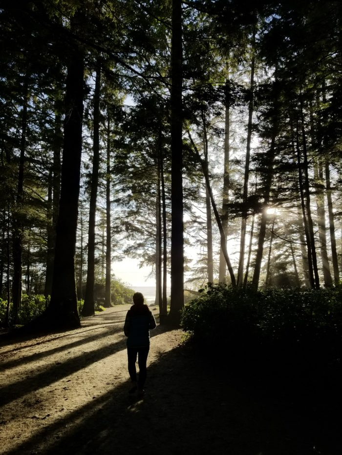 forest, beach, woman, trees, shadows