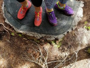 hiking, salomon, trail running, tree
