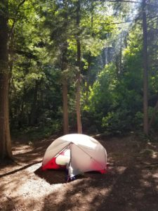 algonquin park, tent, ray of sunshine