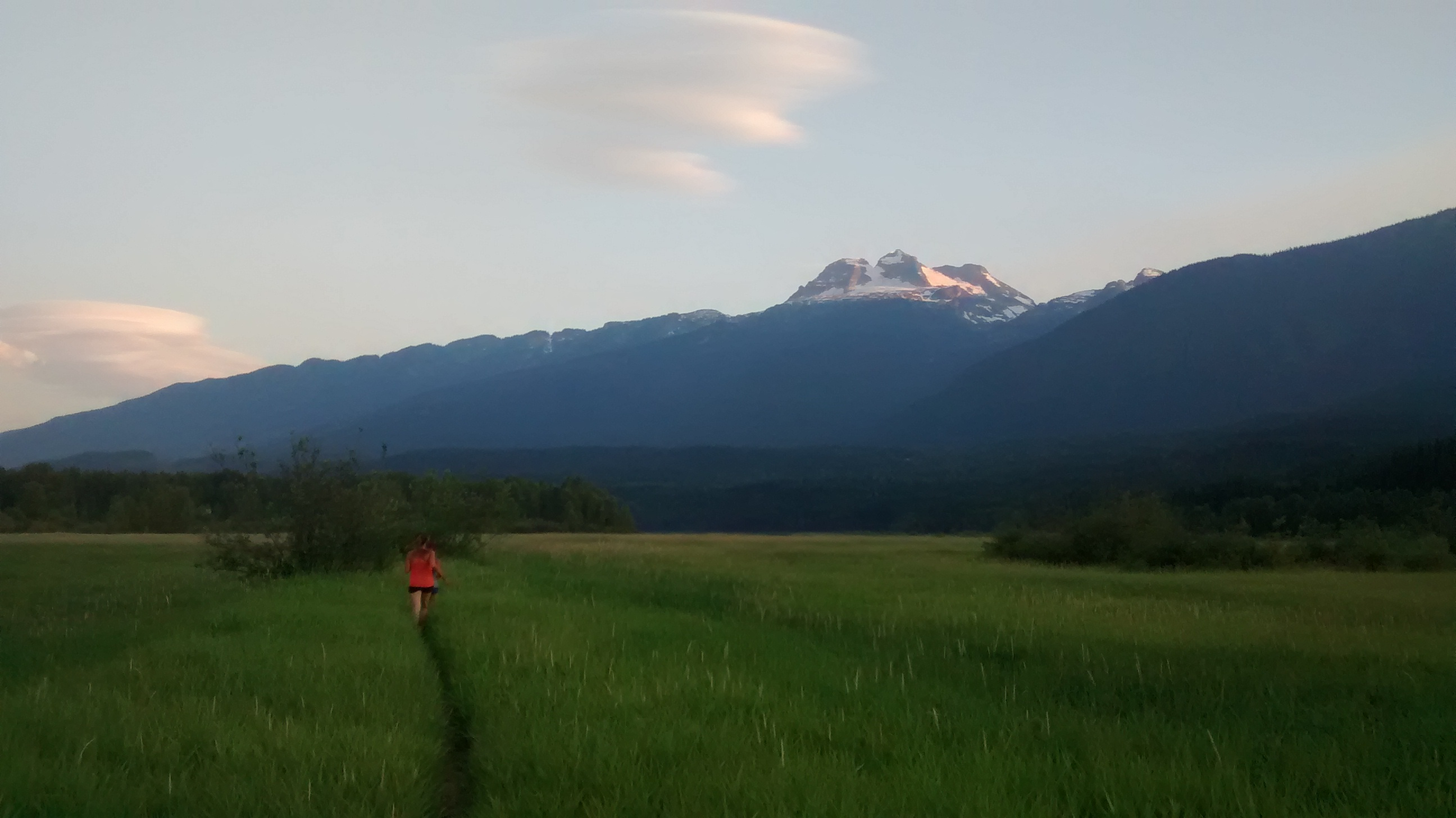 trail run, the flats, revelstoke, mount begbie
